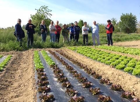 Visita all'azienda agricola biologica