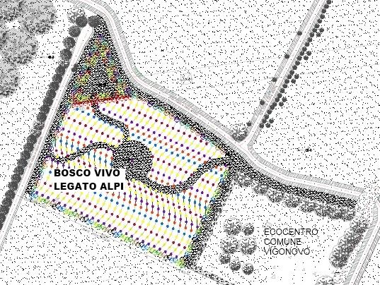 """Progetto Piantiamola """"Bosco Vivo Legato Alpi"""""""
